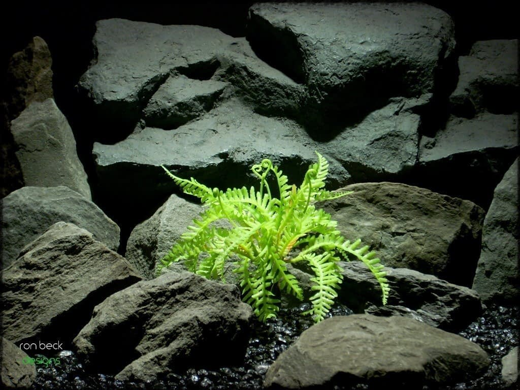 artificial reptile plants: forest fern from ron beck designs prp228
