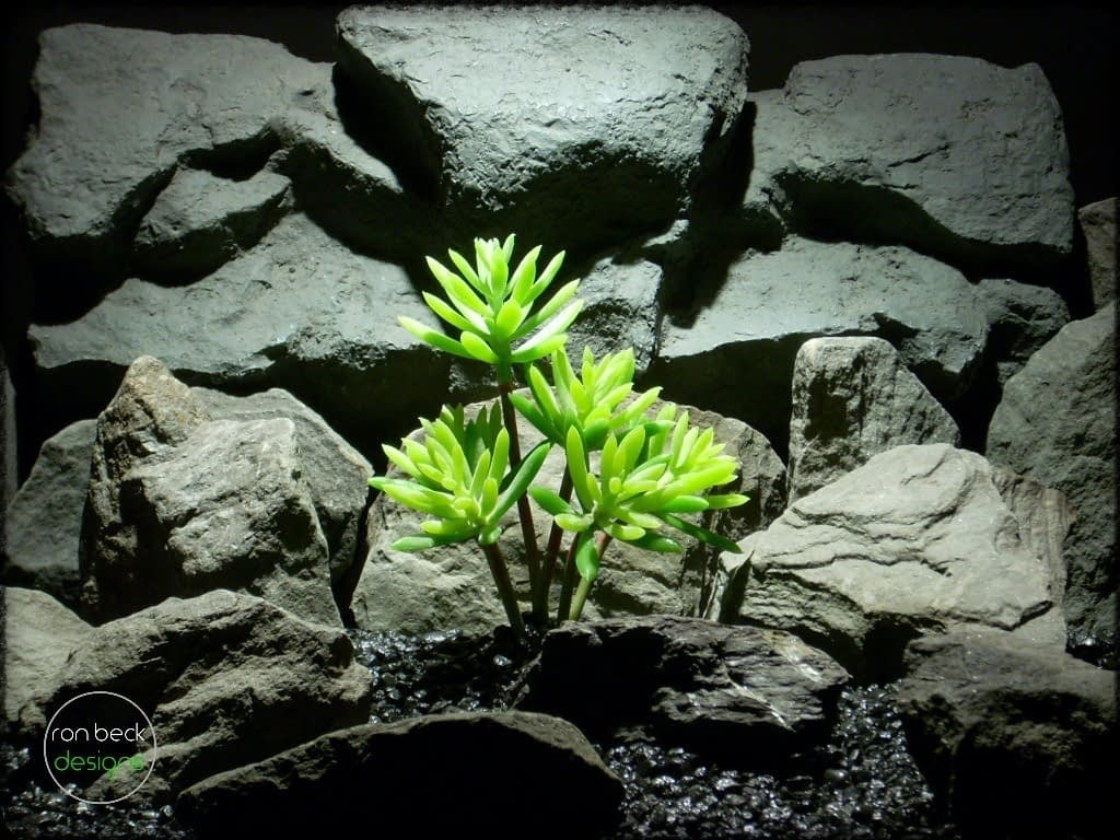 Succulent Echeveria Hookerii artificial reptile plant prp244