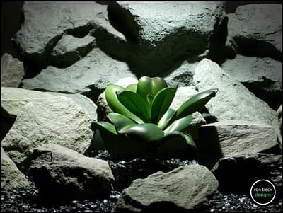 silk reptile plant green echeveria succulent prp177 from ron beck designs