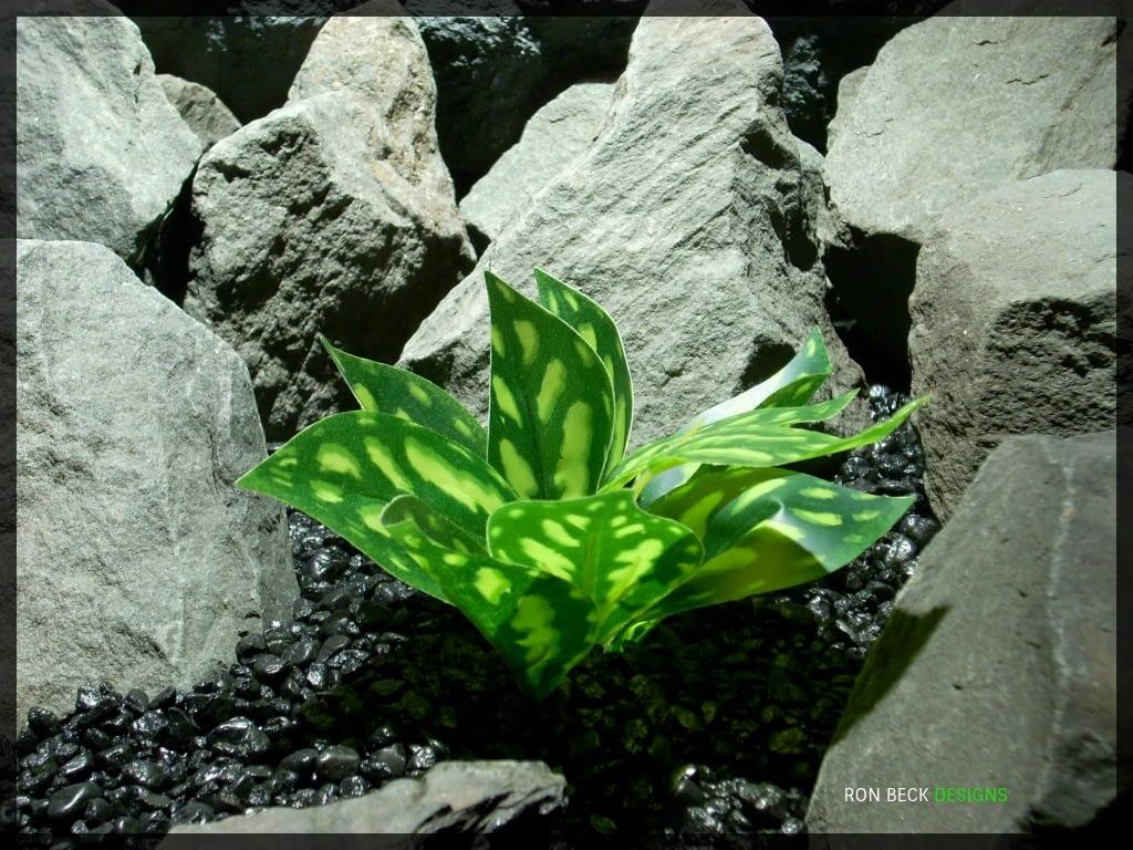 Artificial Chinese Evergreen Aglaonema - Artificial Silk Reptile Habitat Plant - srp339 2
