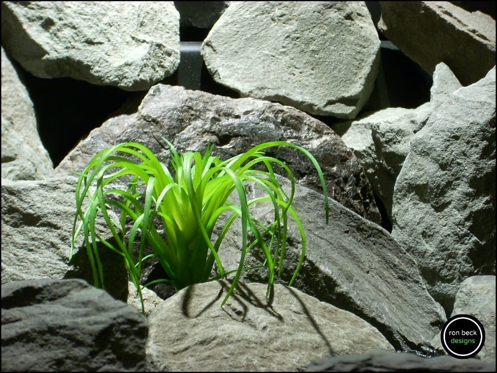 plastic reptile plant mini air plant green from ron beck designs, prp188 2