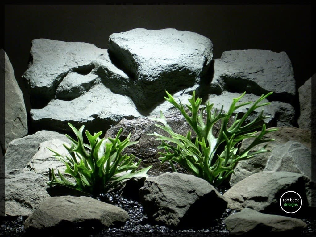 plastic aquarium plants_ staghorn ferns from ron beck designs pap213