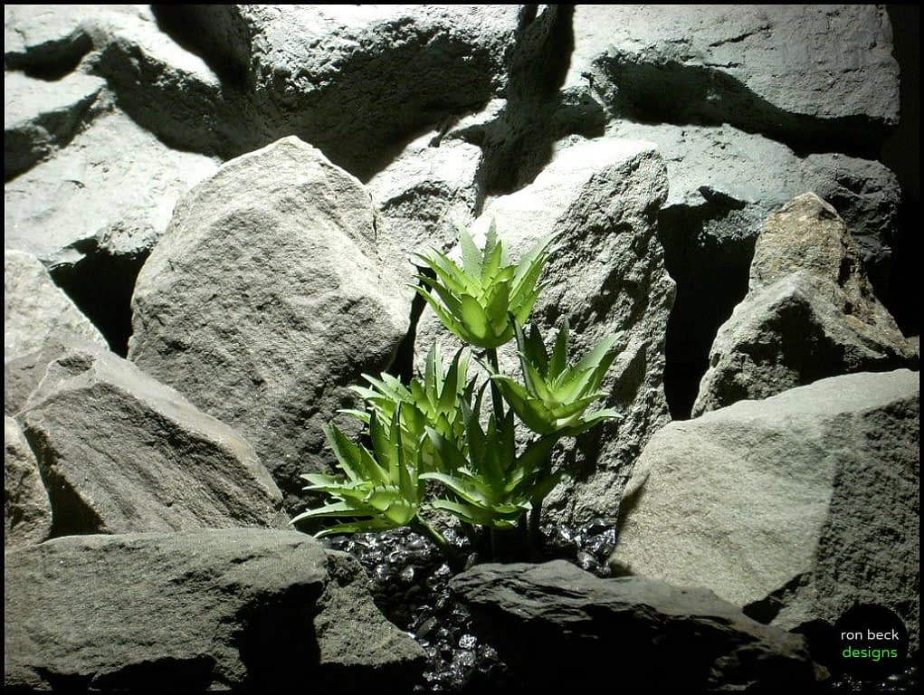 artificial succulent reptile plants star point psrp137 from ron beck designs
