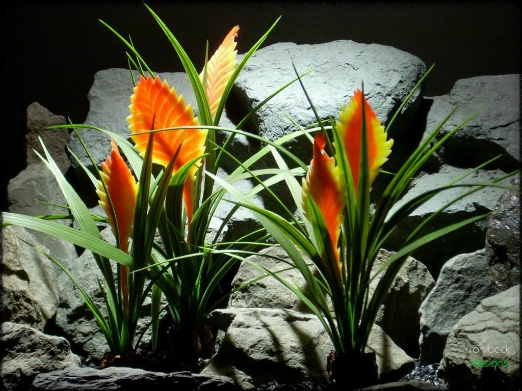 reptile habitat plants bromeliads from ron beck designs