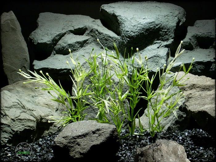 Water Grass Plot - Artificial aquarium plant parp318
