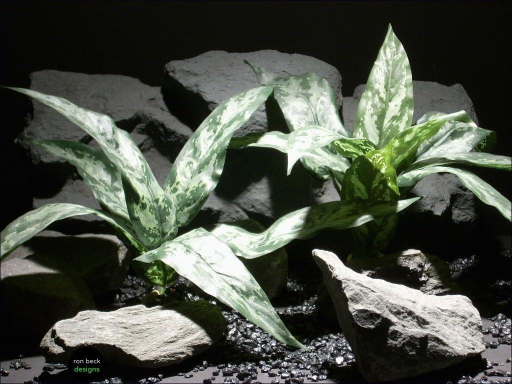 reptile habitat plants dracena lvs green poly silk srp018  ron beck designs