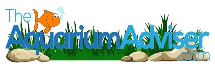 The aquarium adviser | theaquariumadviser.com