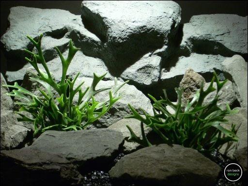 plastic aquarium plants stag-horn ferns pap155 from ron beck designs