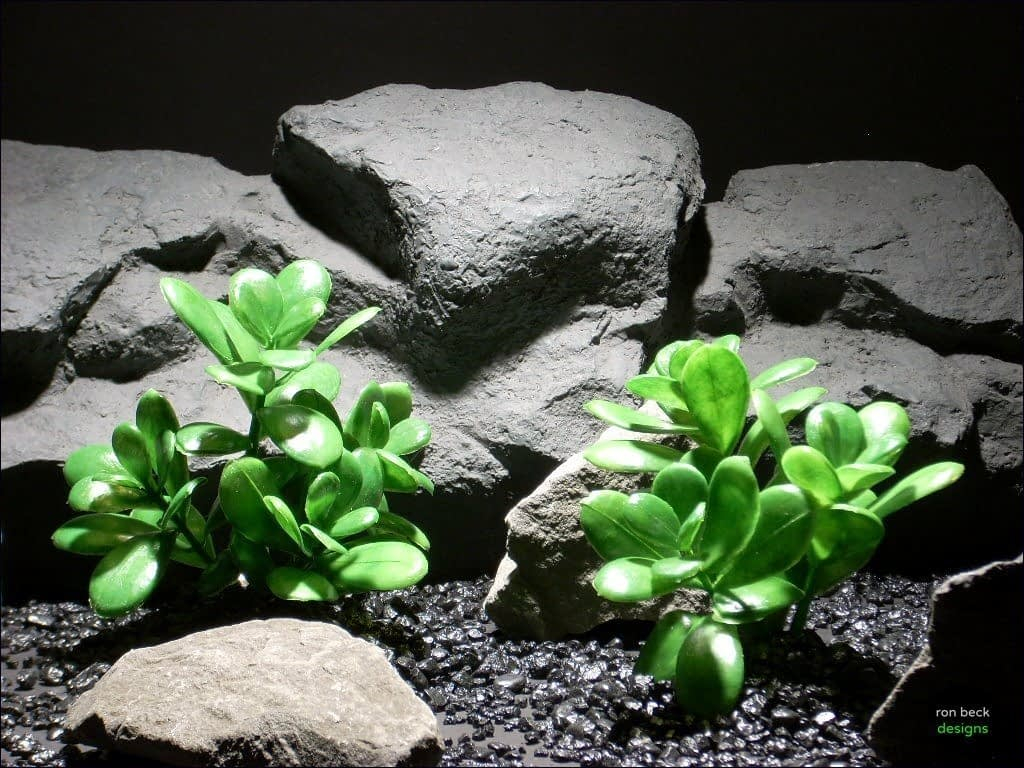 aquarium plants jade leaves  parp30 plstc.  ron beck designs