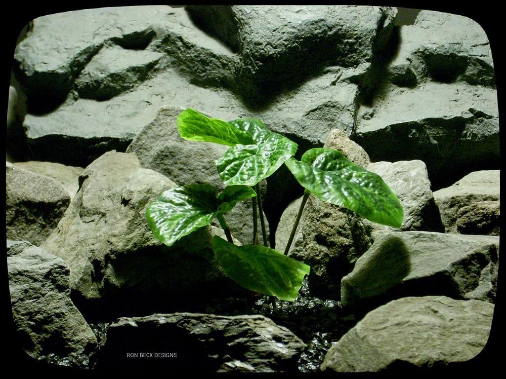 Artificial Peperomia Bush - Artificial Reptile Plant srp328