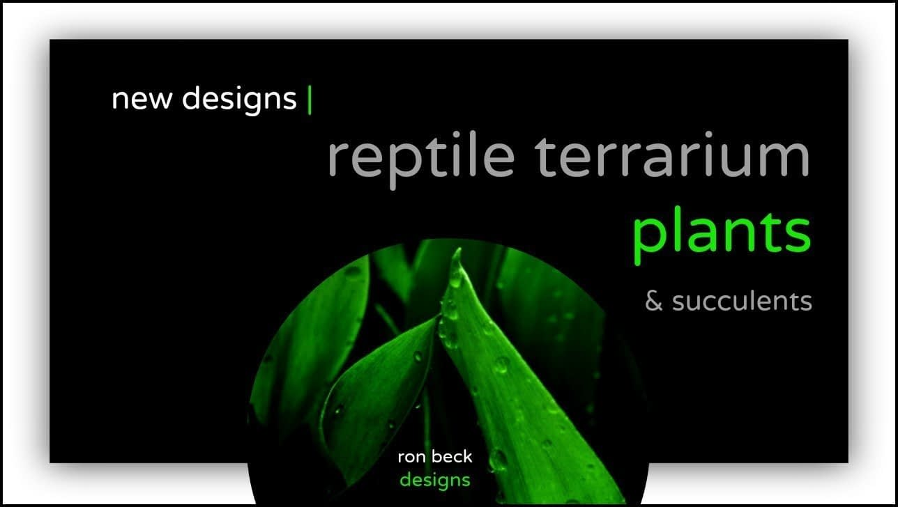 new reptile terrarium plant designs | ron beck designs