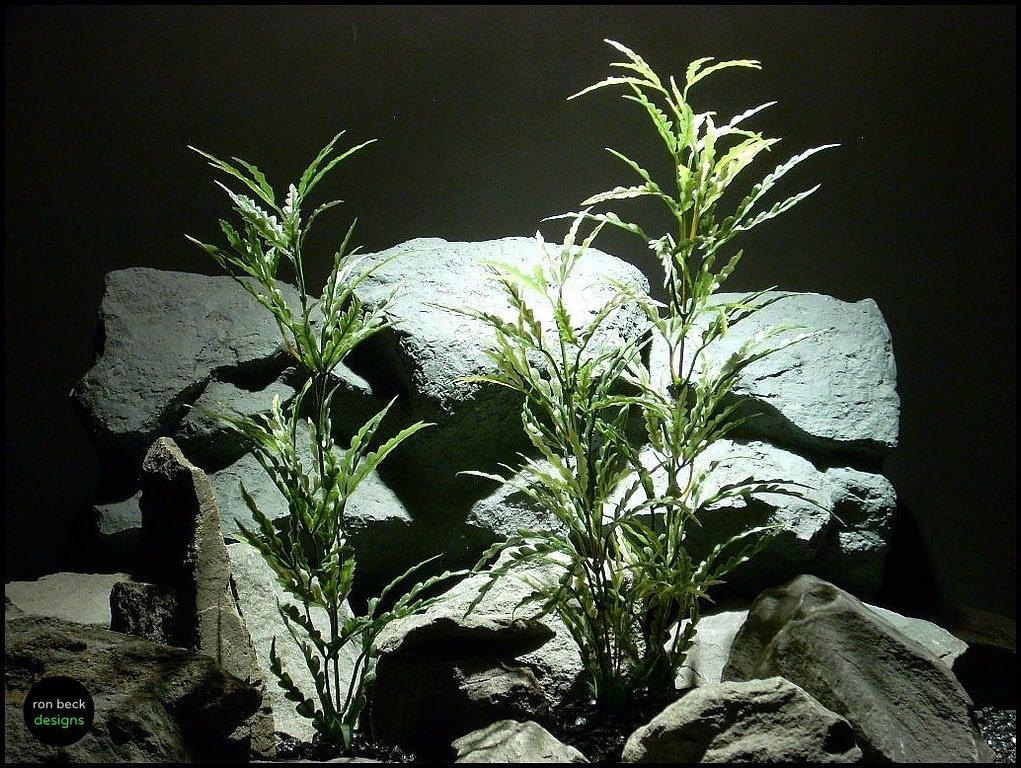 artificial aquarium plants ming aralia set 2 pap122 ron beck designs