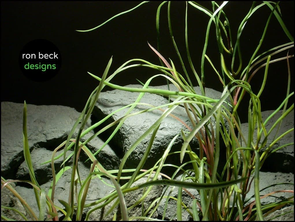 artificial aquarium plant pearl grass from ron beck designs
