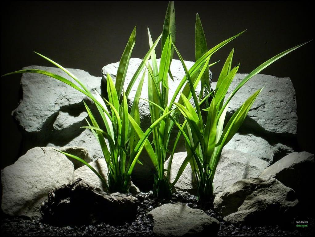 plastic aquarium decor plant arrowhead grass plot sap107 by ron beck designs