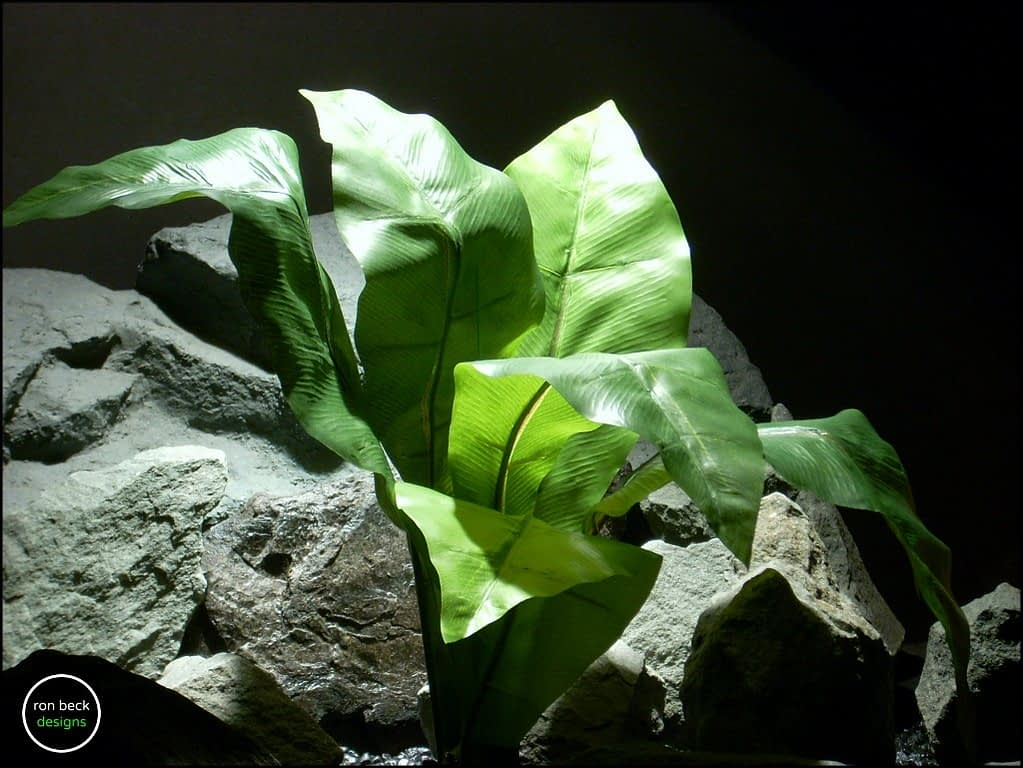 silk reptile plant birds nest fern from ron beck designs. 2 srp184