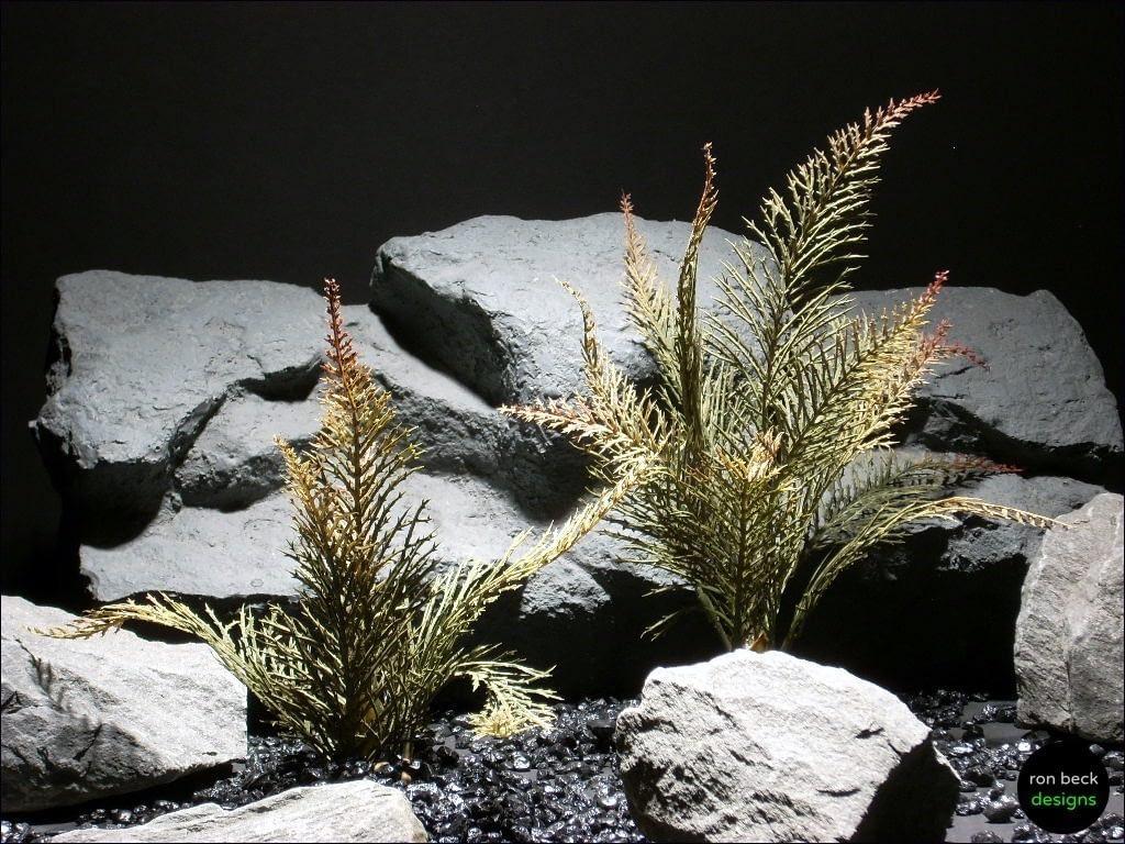 aquarium plants spiked fern  parp029 plstc.  ron beck designs