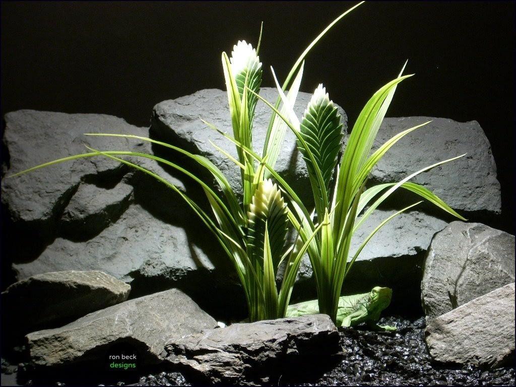 reptile habitat plants bromelaid crm grn prp065 plstc. ron beck designs