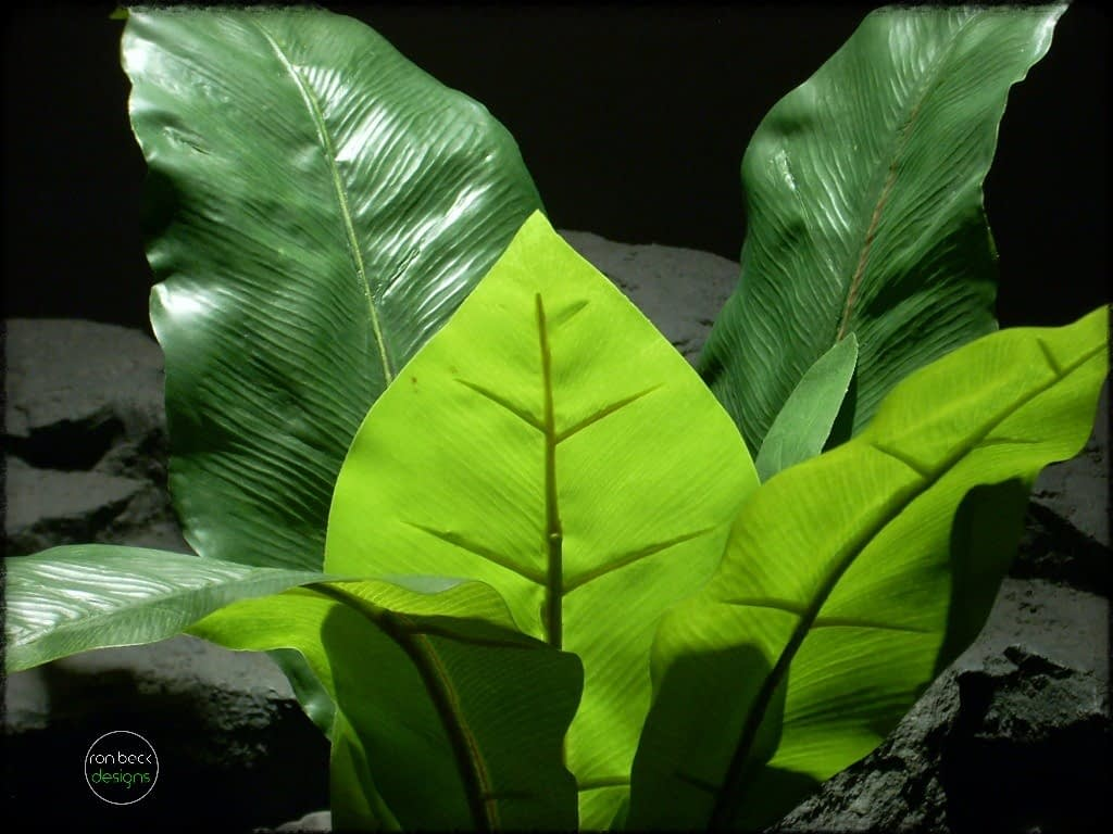 Birds Nest Fern - Artificial Silk Reptile Plants 3