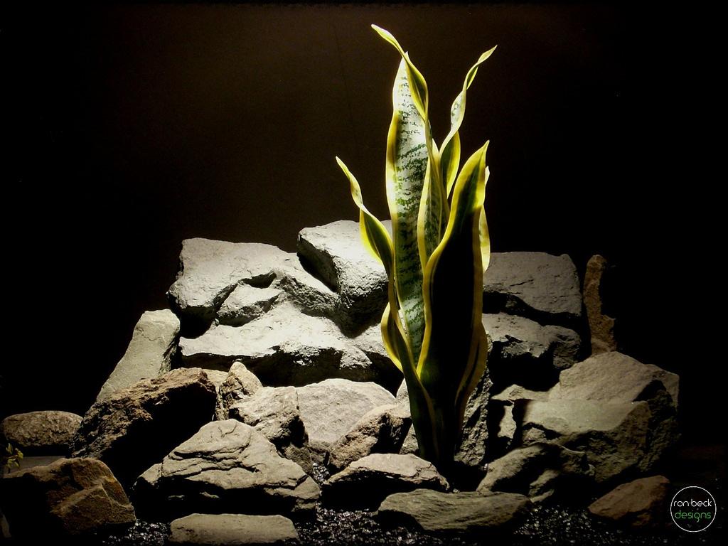 Artificial Snake Plant Sansevieria - reptile plant - ron beck designs prp285