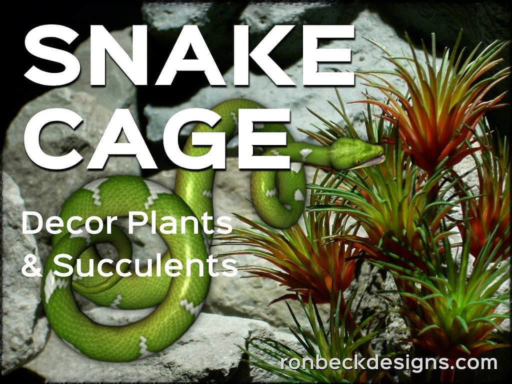 Snake Cage Decor Plants - Succulents - Ron Beck Designs 1200 900
