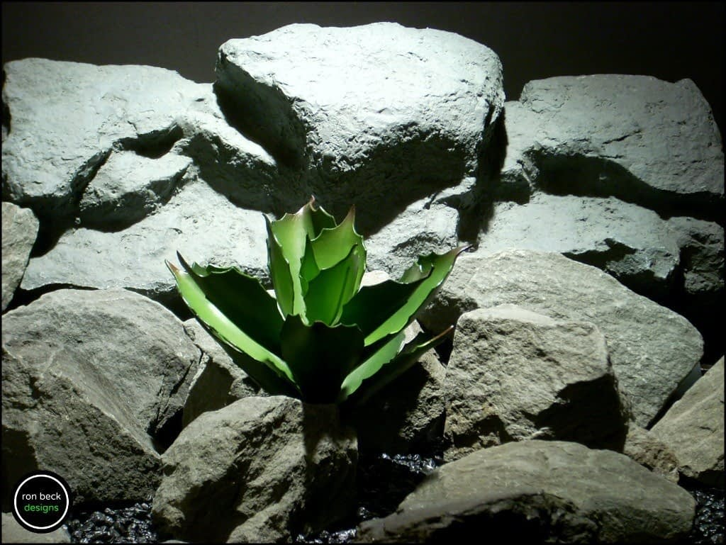 reptile plant: echeveria succulent. prp170 from ron beck designs