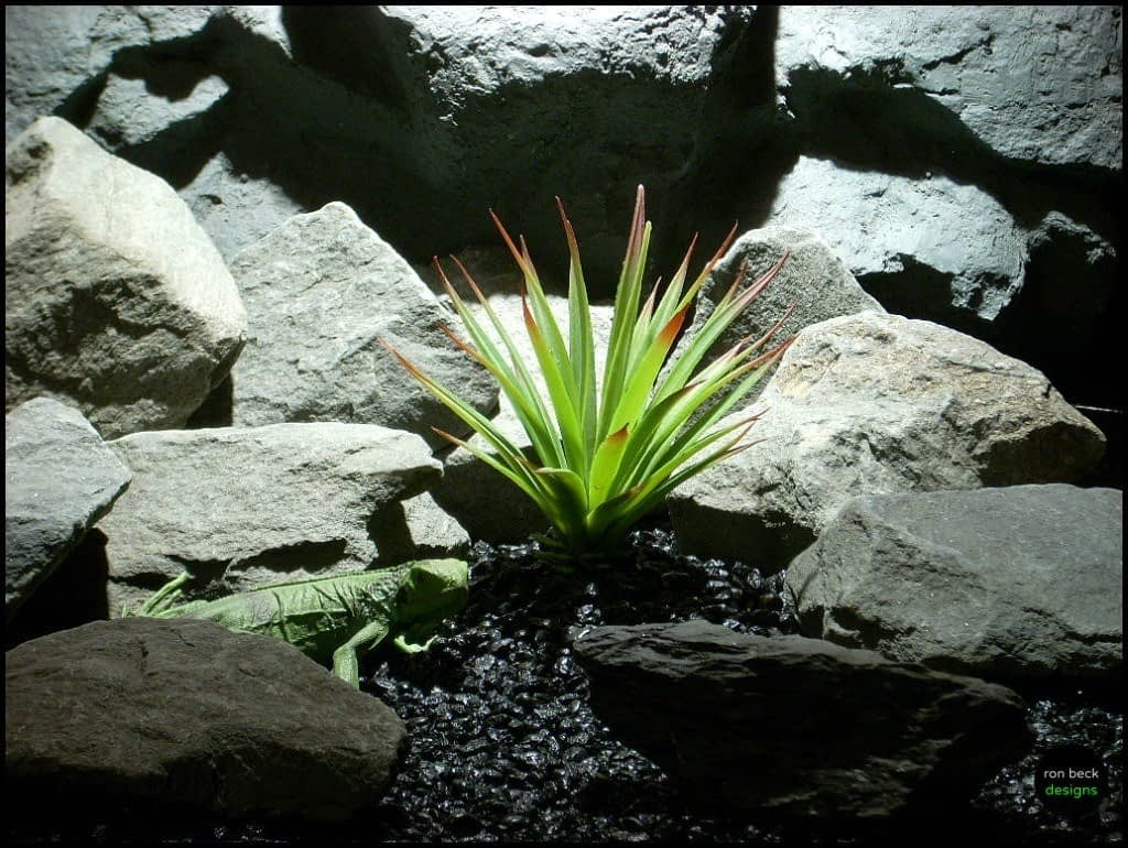 reptile snake habitat plants yucca succulent psrp132 from ron beck designs