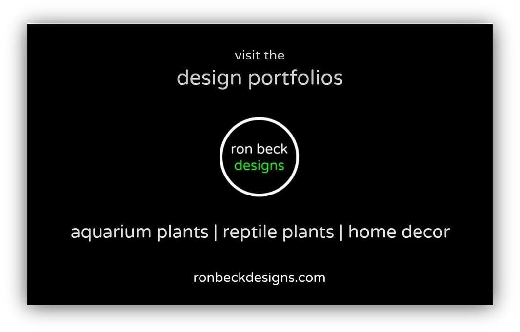 design portfolios of ron beck designs | ronbeckdesigns.com