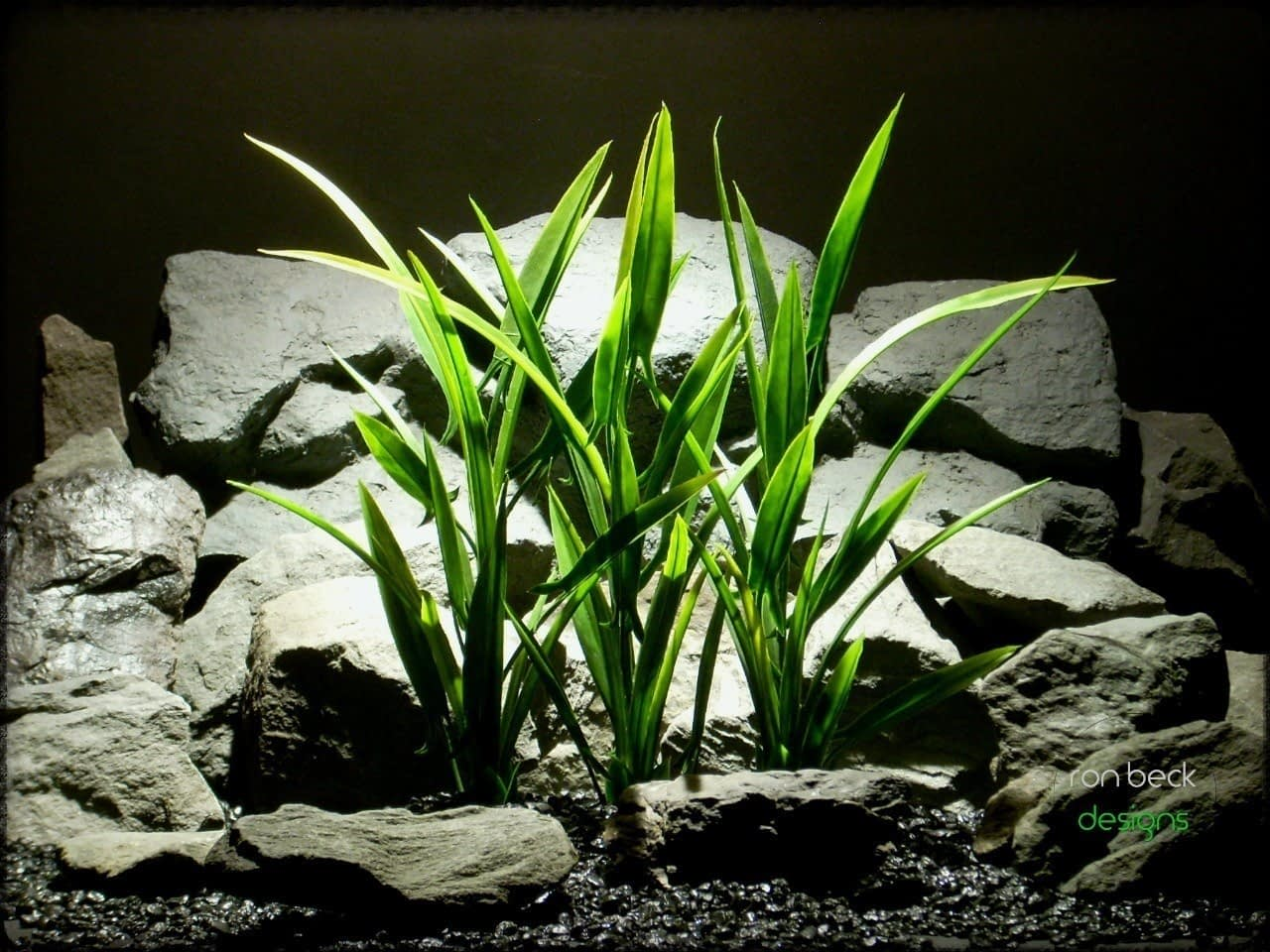 artificial aquarium plants: arrowhead grass plot from ron beck designs, 04 2018