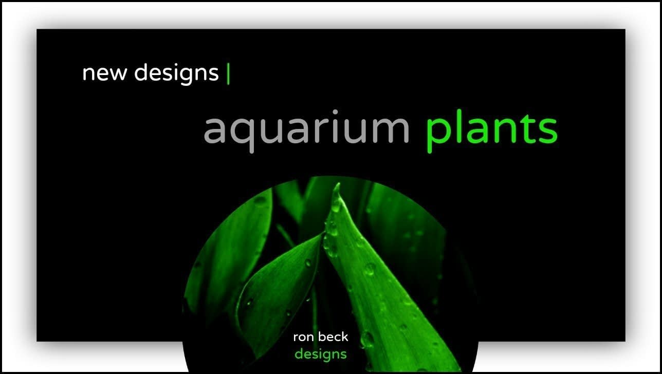 new aquarium plant designs youtube update | ron beck designs