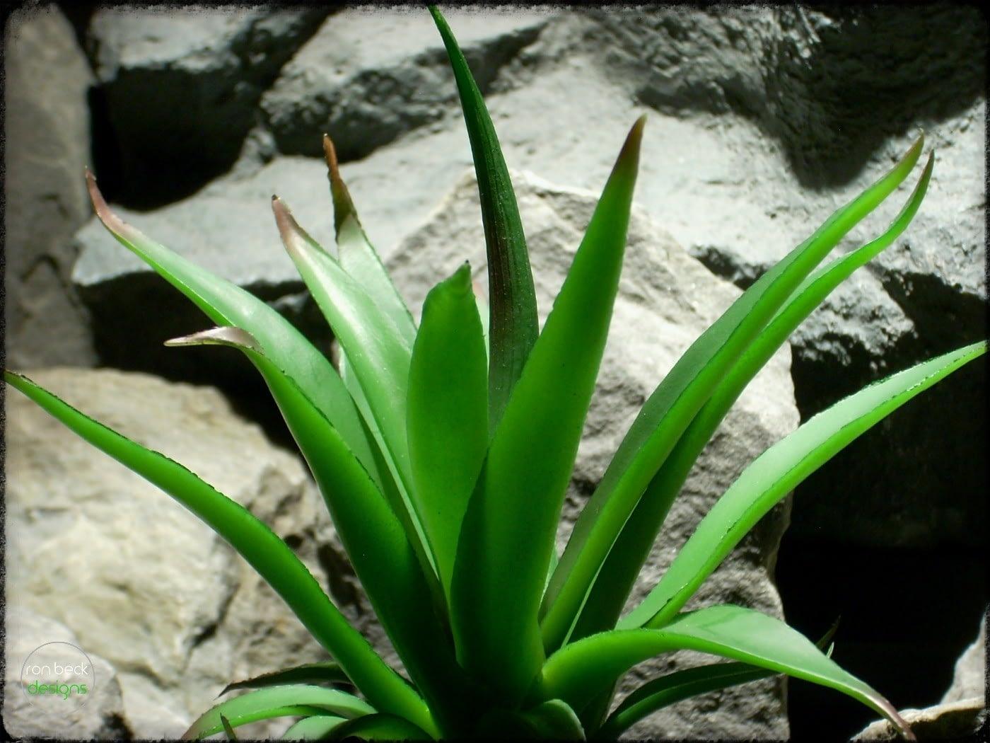 Artificial Aloe Succulent - Artificial Reptile Plant - prp317 2