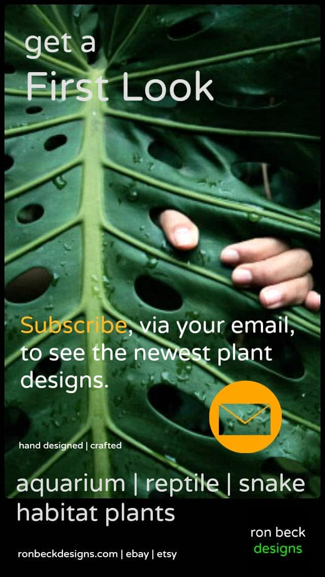 email subscription new plant designs ron beck designs
