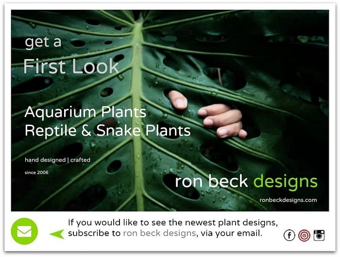 first look at ron beck designs subscribe 1024 768