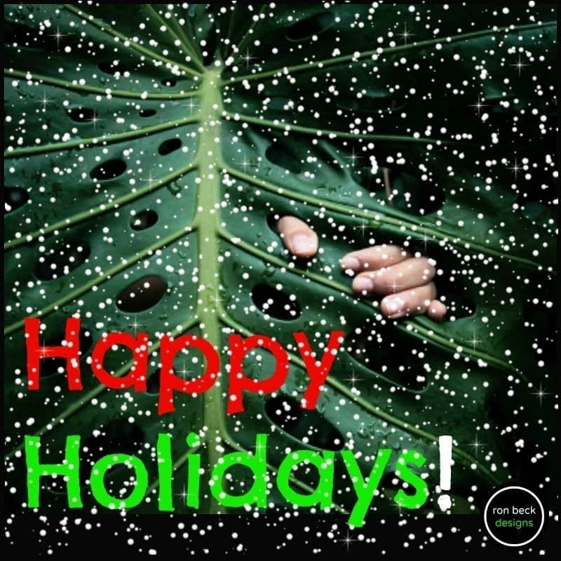 happy holidays 2016 ron beck designs 800 800