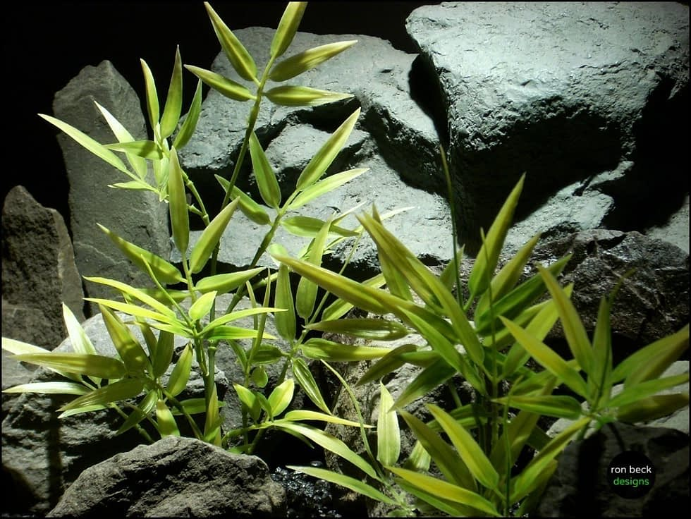 plastic aquarium plants Variegated Bamboo from ron beck designs, pap209 3