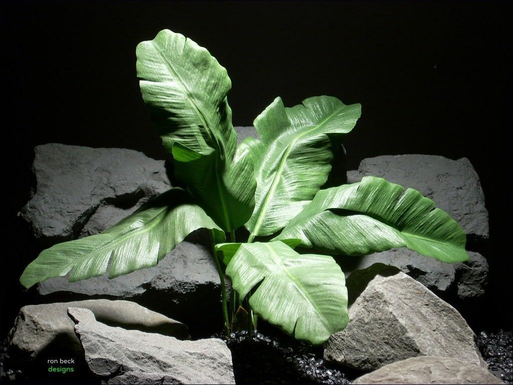 reptile habitat plants bannana leaves  srp032 silk  ron beck designs