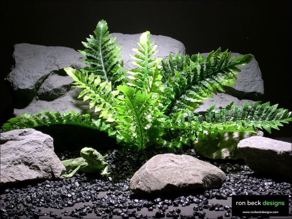 reptile habitat plants fern real touch srp019 silk latex  ron beck designs