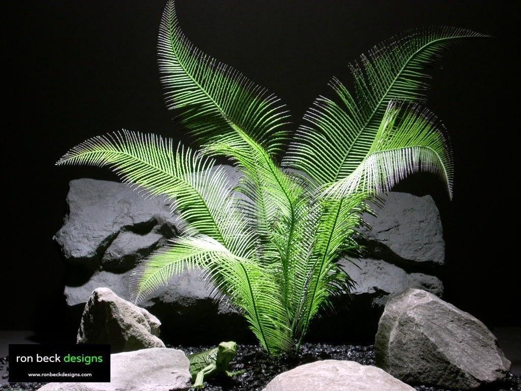 reptile habitat plants green tail fern lvs prp004  ron beck designs