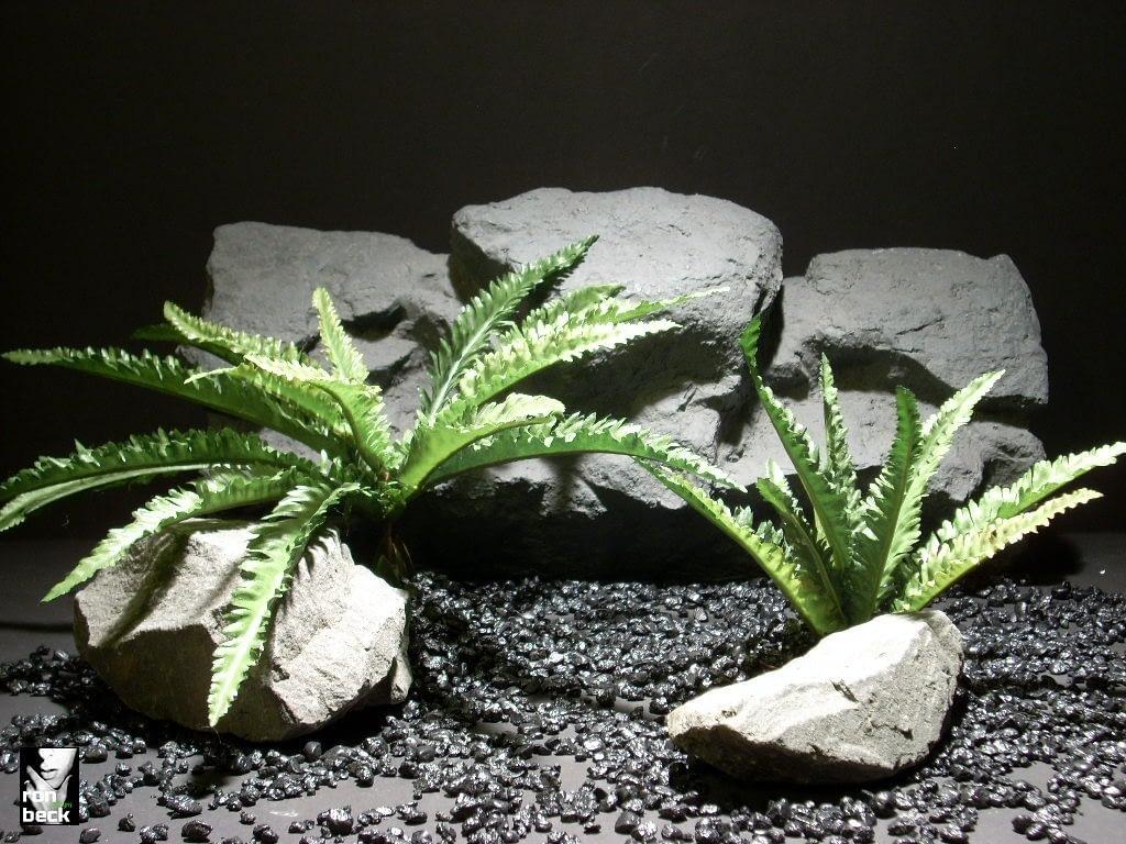 reptile habitat plants umbrella fern set sap408 silk
