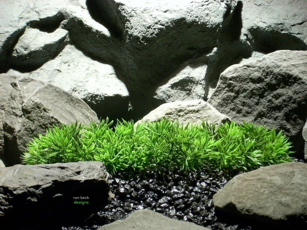 plastic aquarium plant turf grass plot pap094 ron beck designs