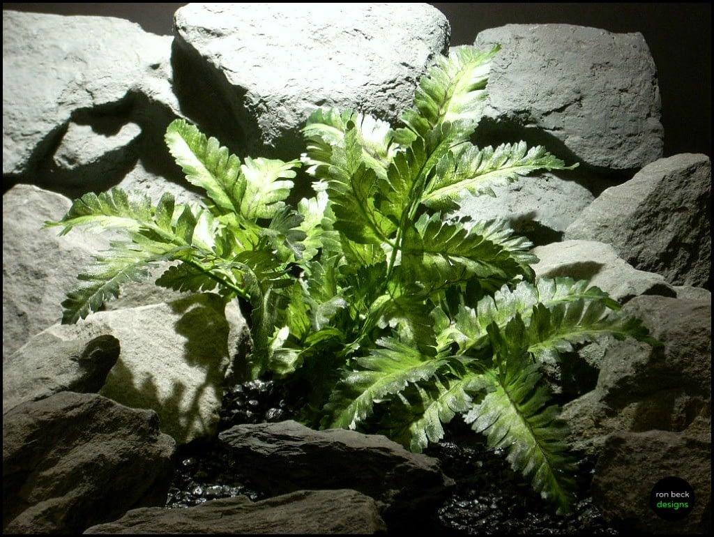 silk reptile plant snake habitat bracken fern srp125 from ron beck designs