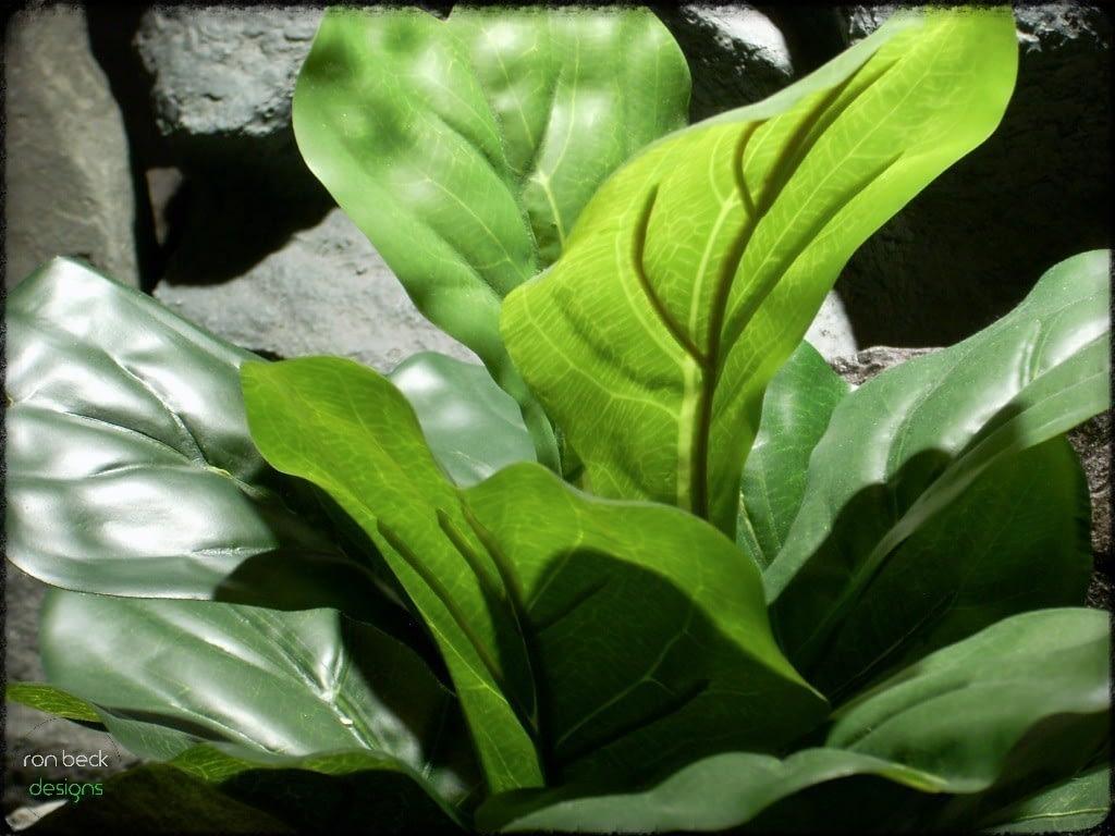 silk reptile terrarium plant fiddle leaf bush ron beck designs srp214 3