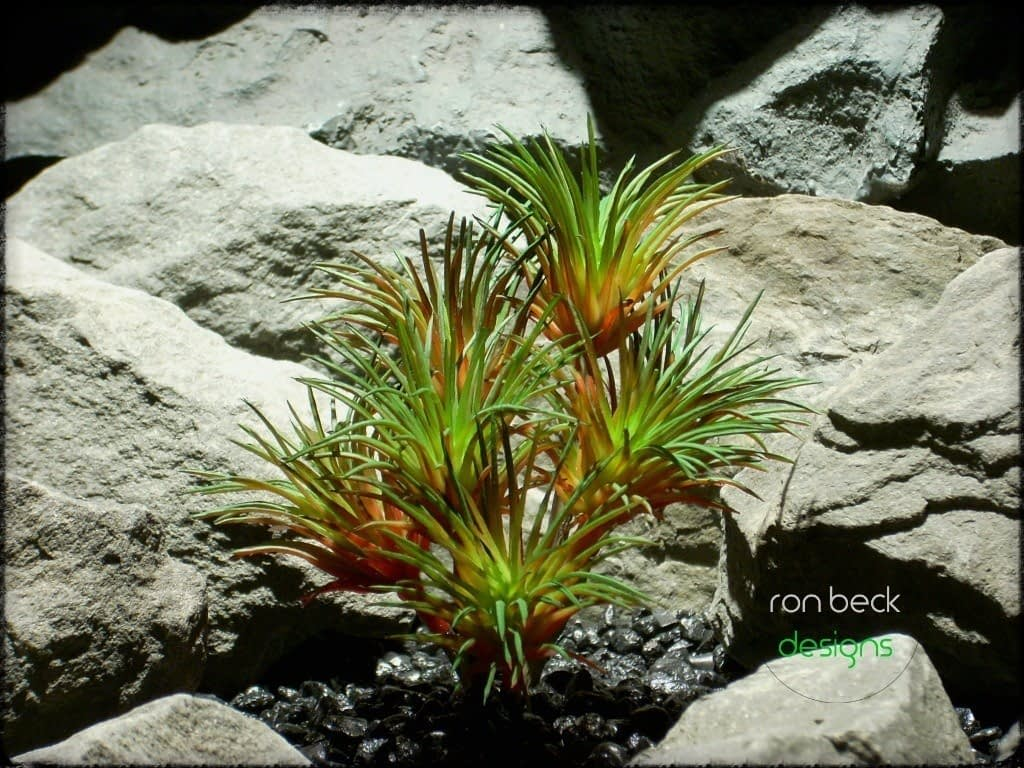 artificial reptile plants: succulent red and green from ron beck designs prs219 2