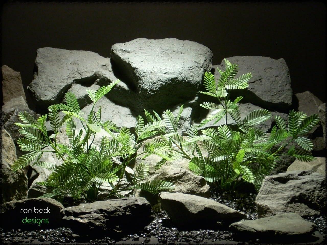 artificial aquarium plant: mimosa bushes custom order ron beck designs