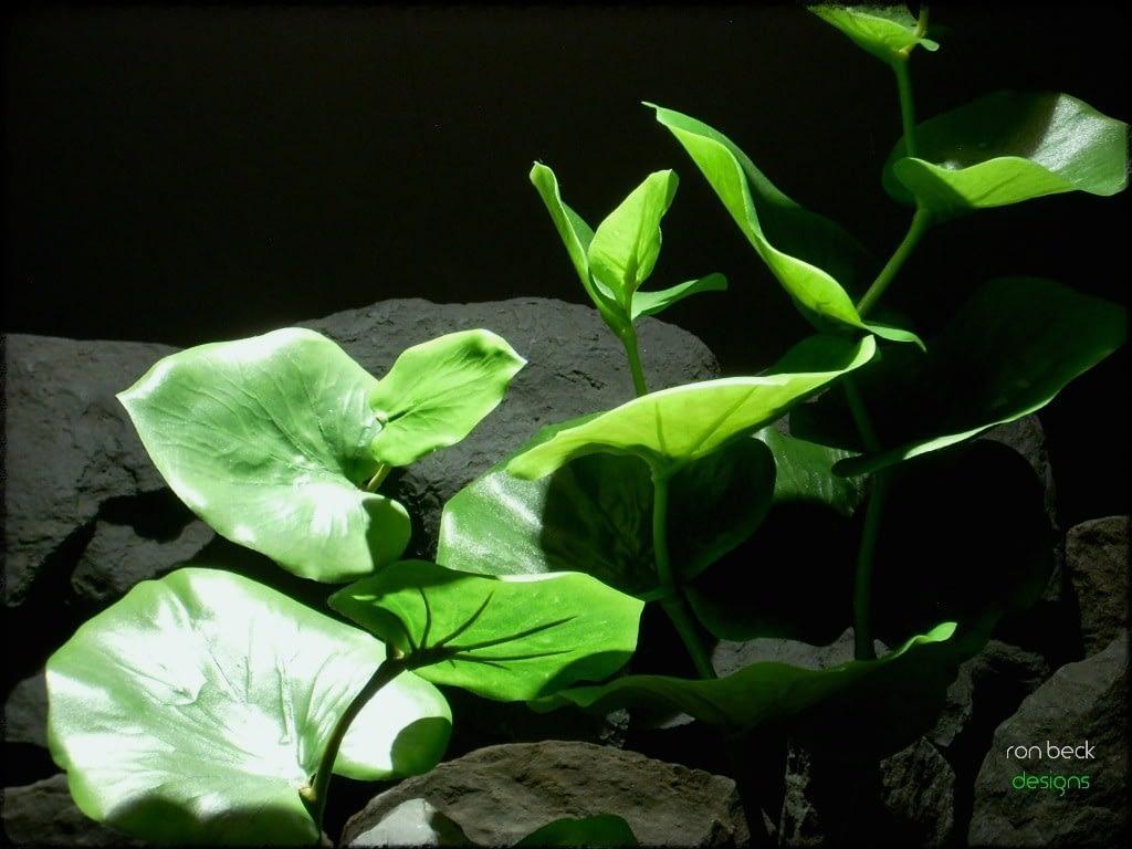 green eucalyptus   silk reptile plants srp231 2