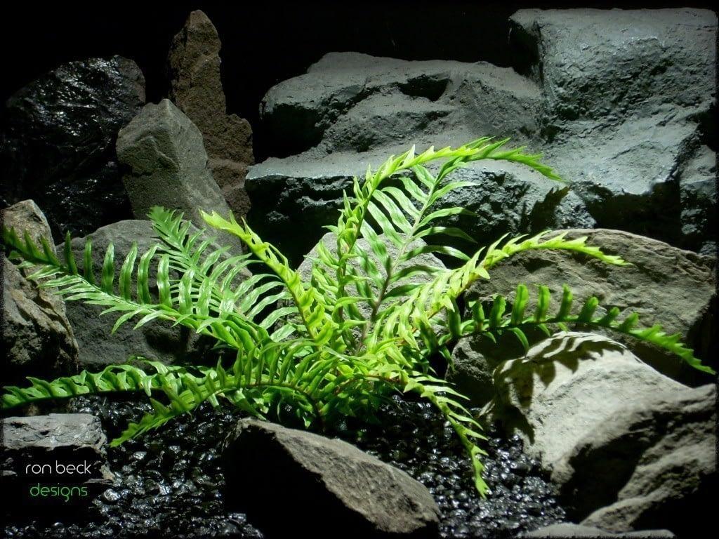 plastic fern   artificial reptile plant prp229