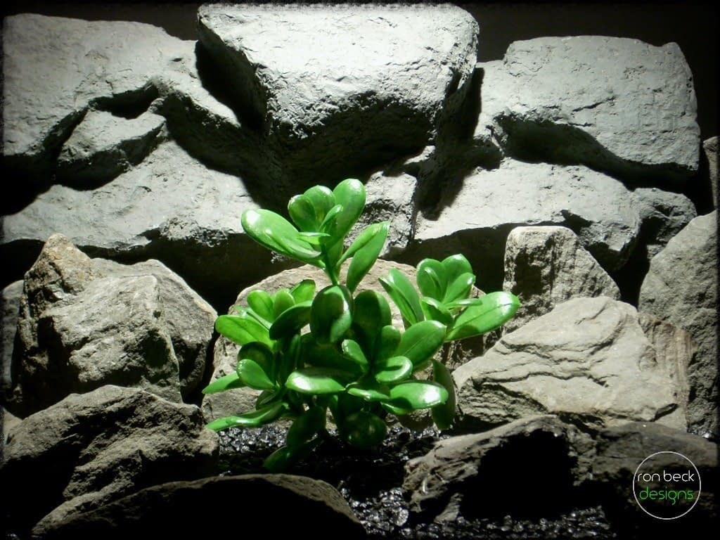 artificial jade plant   reptile plant prp247