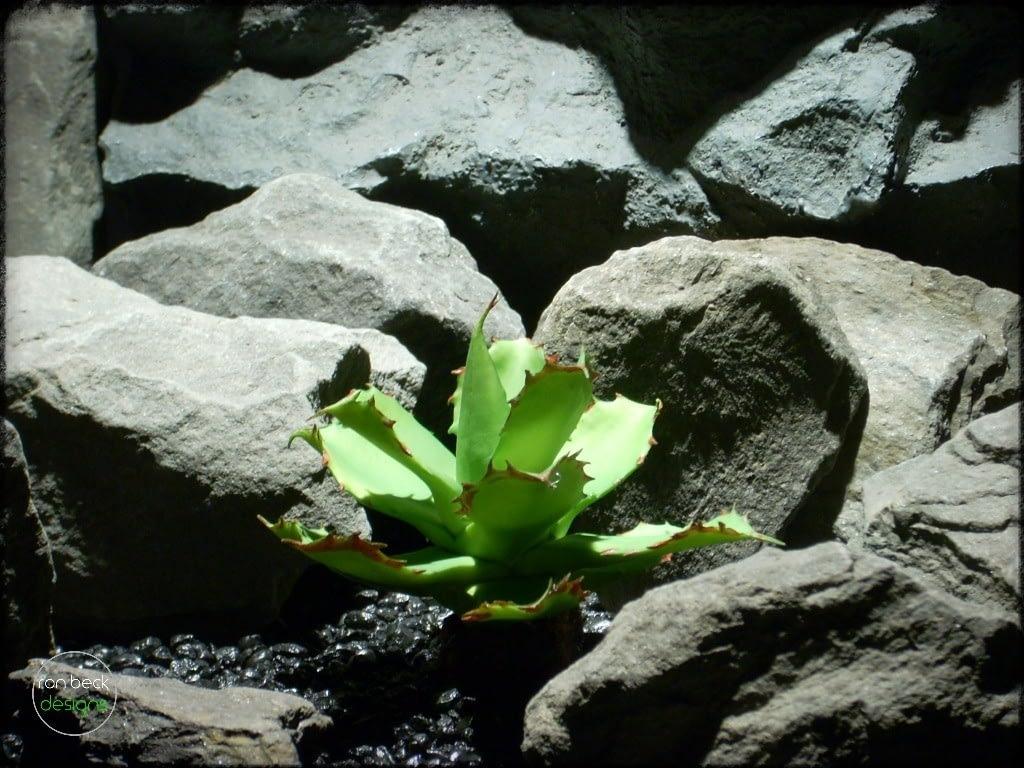 artificial succulent   artificial reptile plant fir bark trunk prp258