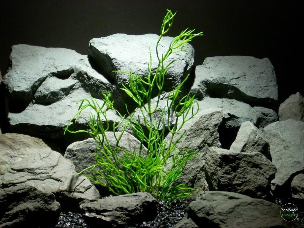 Mistletoe Cactus Artificial Reptile Plant prs261