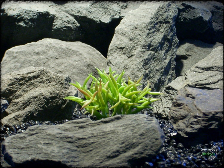 Kleinia Succulent - Artificial Reptile Plant