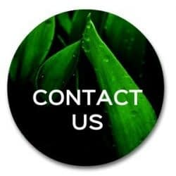 contact us | email ron beck designs